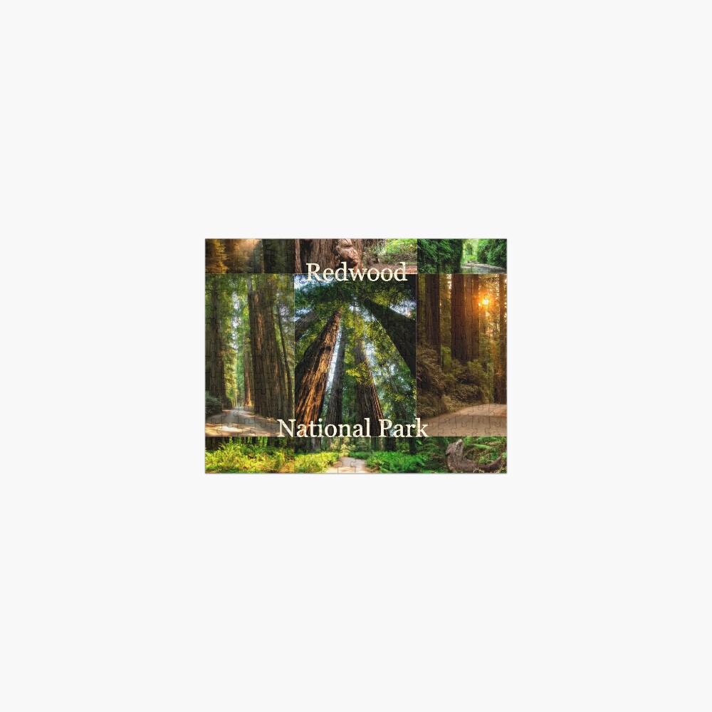 Explore Redwood National Park - CA Jigsaw Puzzle