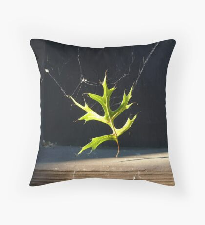 Spider Decor Throw Pillow