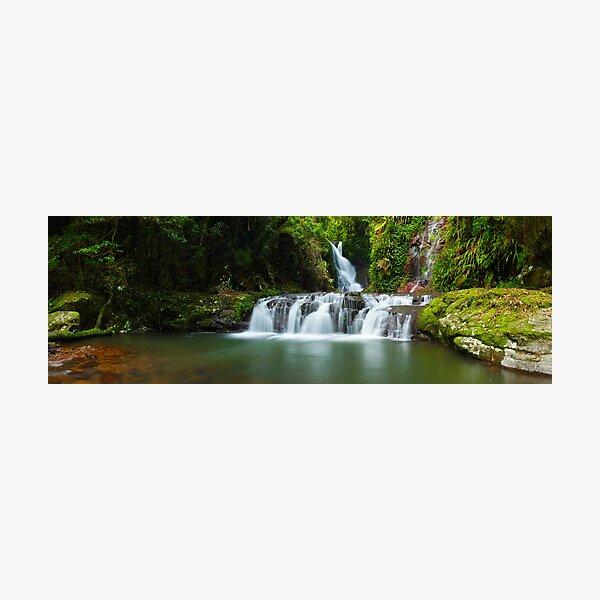 Elabana Falls, Lamington National Park, Queensland, Australia Photographic Print