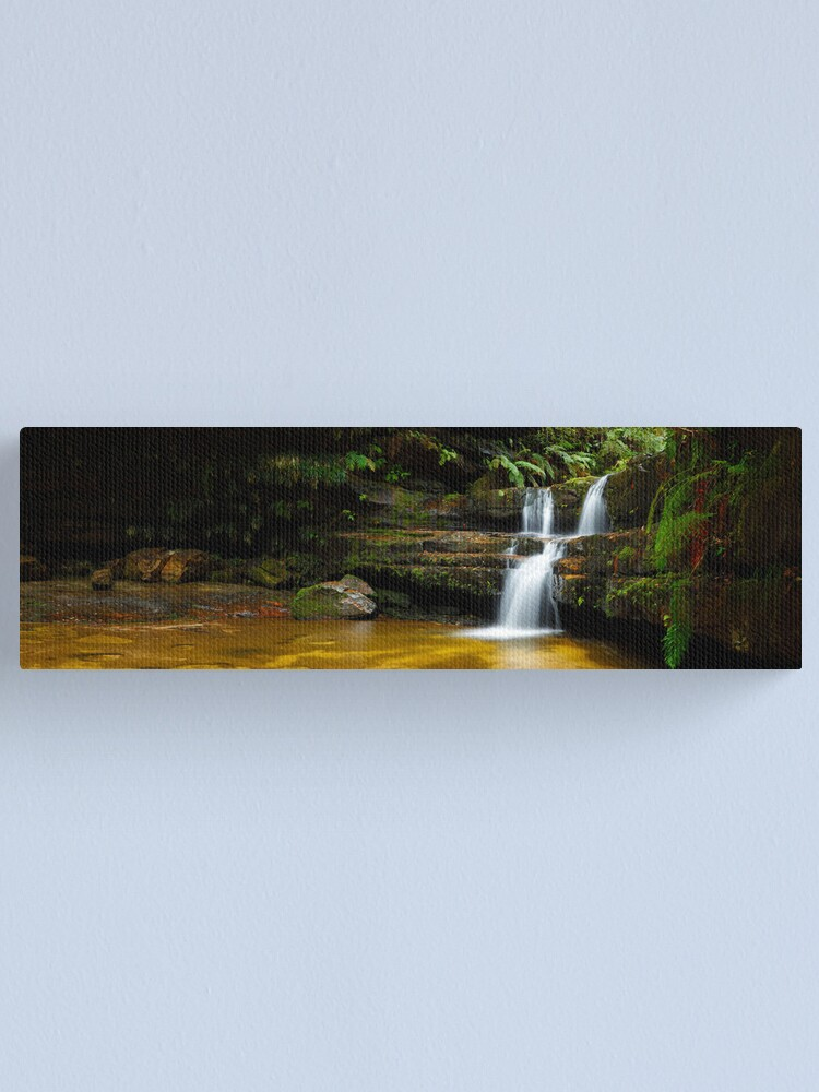 Alternate view of Terrance Falls, Hazelbrook, Blue Mountains, New South Wales, Australia Canvas Print