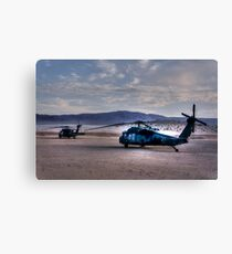 Desert Blackhawks Canvas Print