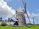 Sugar Mill in Marie-Galante by globeboater