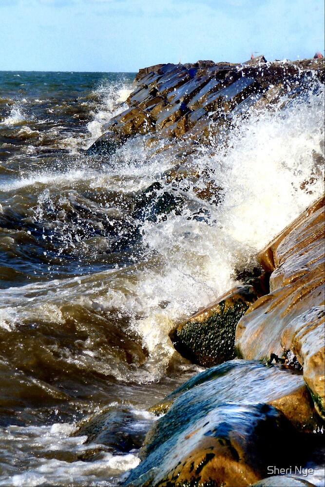Lake Erie Beach by Sheri Nye