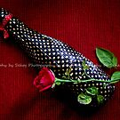 A CHOCOLATE FOR A 'ROSE'...!!! by Sehaj Kaur