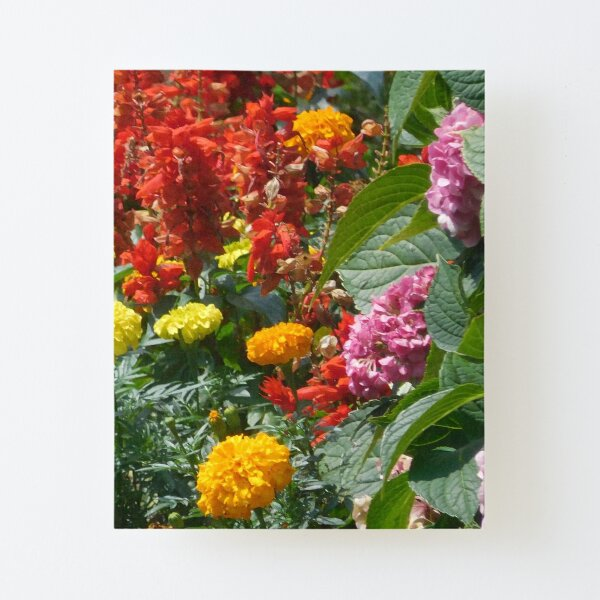 Flower Garden 114 Canvas Mounted Print