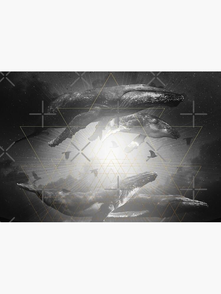 Space Between Dreams & Reality II by soaringanchor