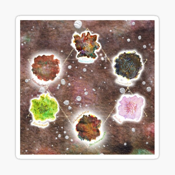 Cosmic Compost Complete Collection Art Prints Sticker