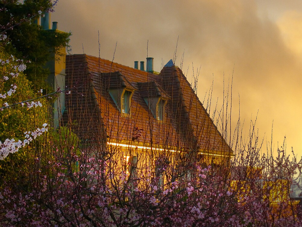 Golden Moments Pacific Heights by David Denny