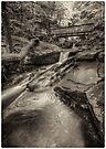 Below R.B. Ricketts Falls June 2013 by Aaron Campbell