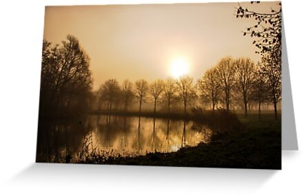 Mystical morning  by steppeland