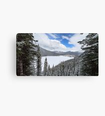 Peacefully Frozen Canvas Print
