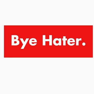 Bye Hater by Chris2490