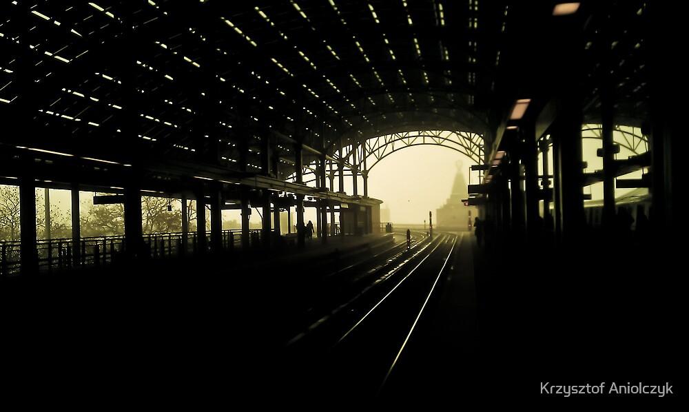 Coney Island train station by Krzysztof Aniolczyk