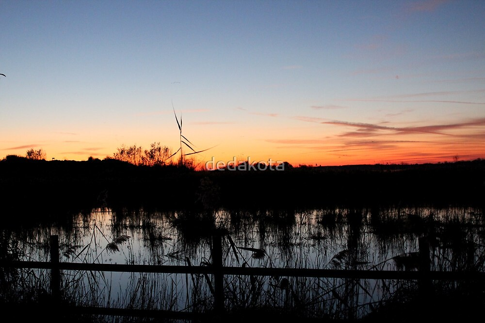 sunset  by dedakota