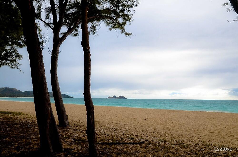 Waimanolo Bay by csztova