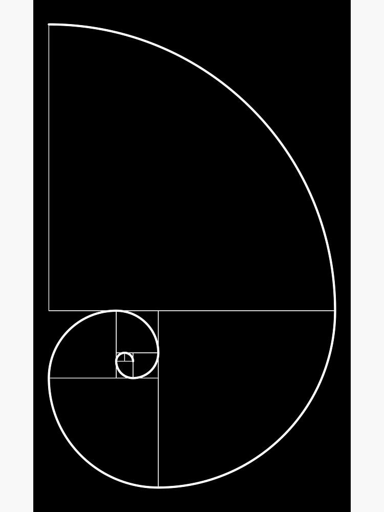 Fibonacci Spiral 001 by rupertrussell