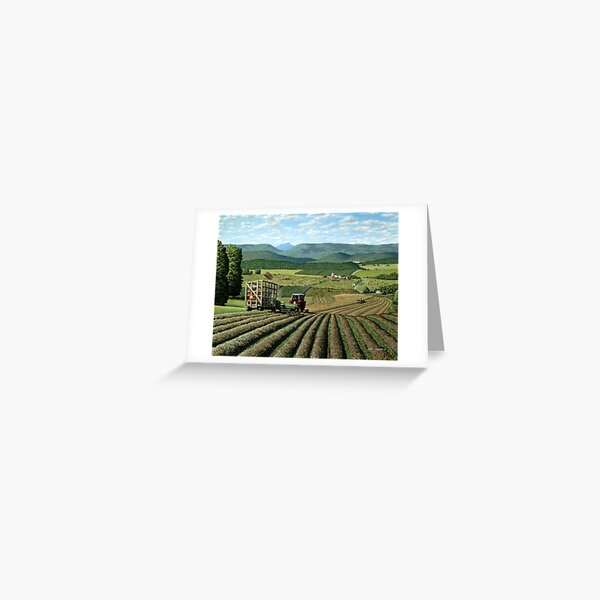 Twin Maple Farm Greeting Card