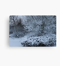 beautiful snow scene Canvas Print