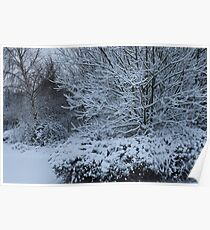 beautiful snow scene Poster