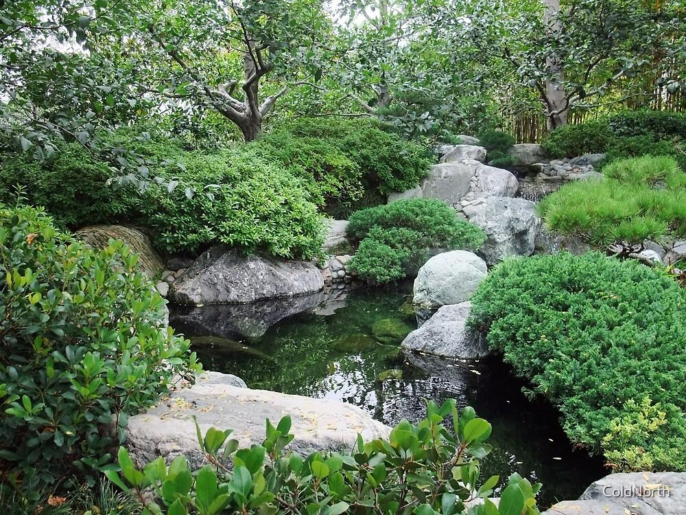 Koi Pond, Balboa Park by ColdNorth