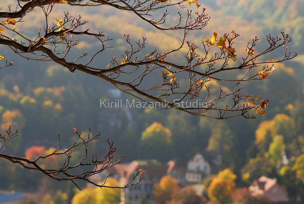 The gold branch of autumn by Kirill Mazanik