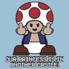 Our Princess Is In Another Castle by anfa