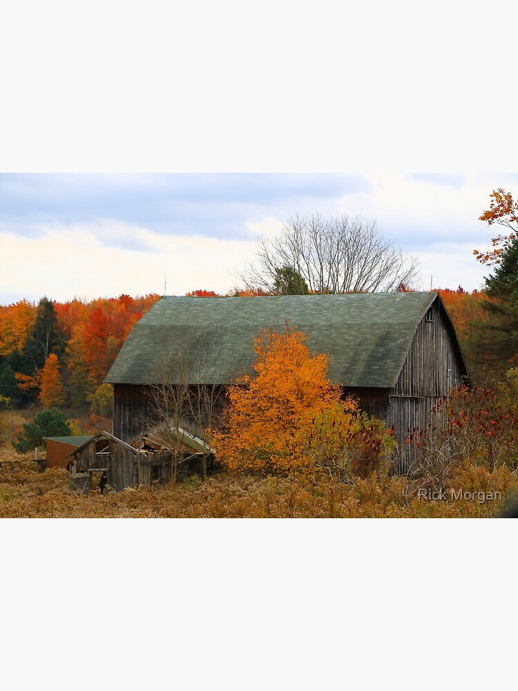 This Old Barn Among a Colorful Autumn Day  by RMorganSnapshot