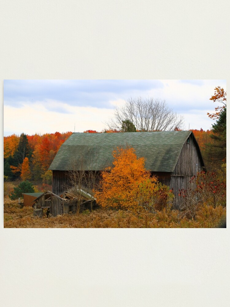 Alternate view of This Old Barn Among a Colorful Autumn Day  Photographic Print