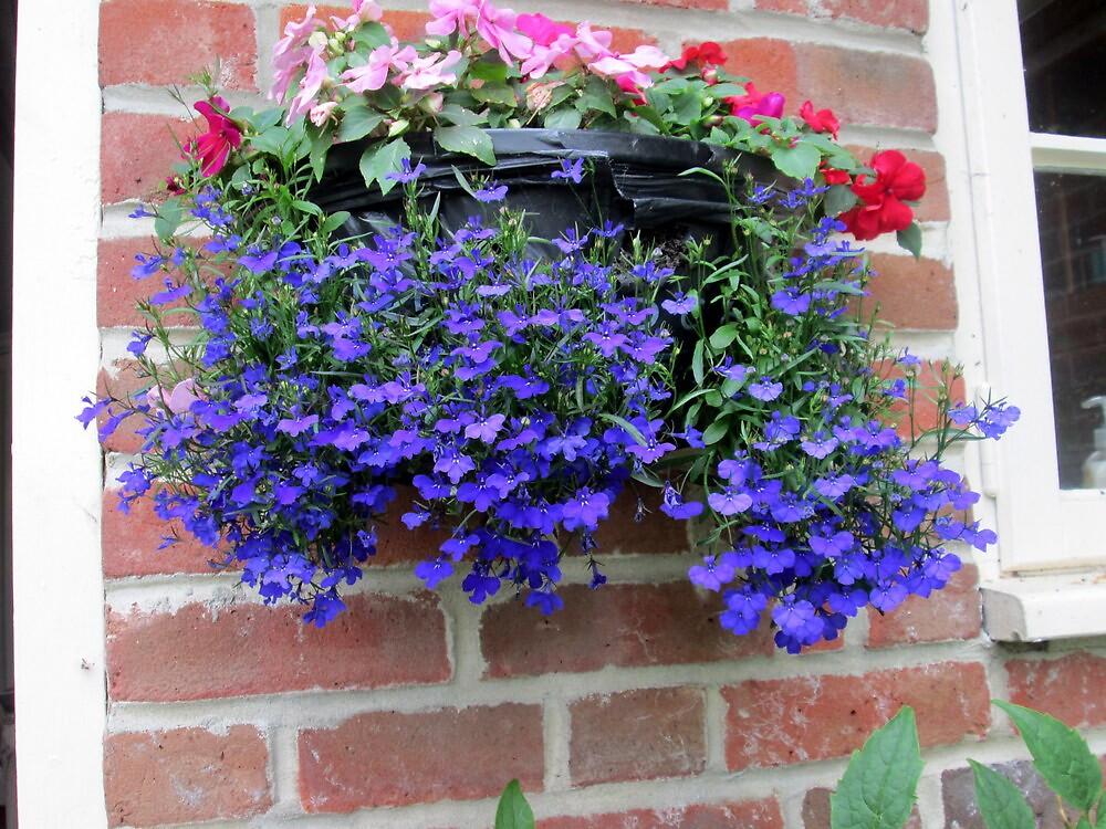basket of flowers by margaret hanks
