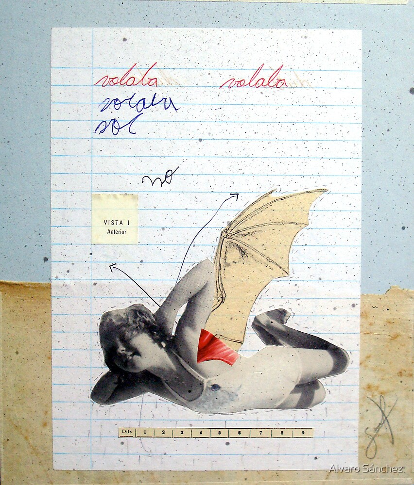 VOLABA (to fly) by Alvaro Sánchez