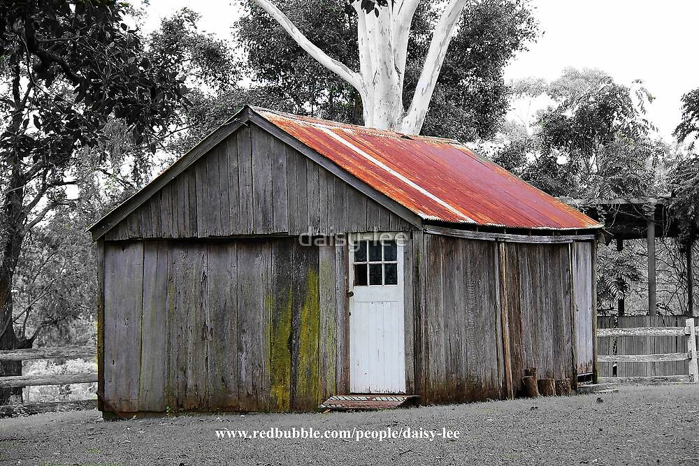 reduced colour shed by daisy-lee
