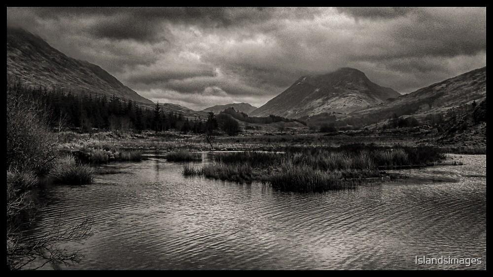 Glenstrae, Dalmally, Argyll by Islandsimages
