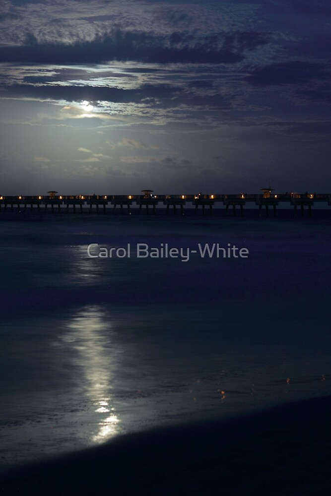 Moody Blue by Carol Bailey-White