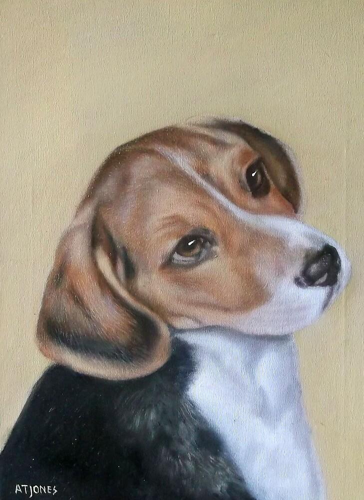 Beagle Dog by adriantj