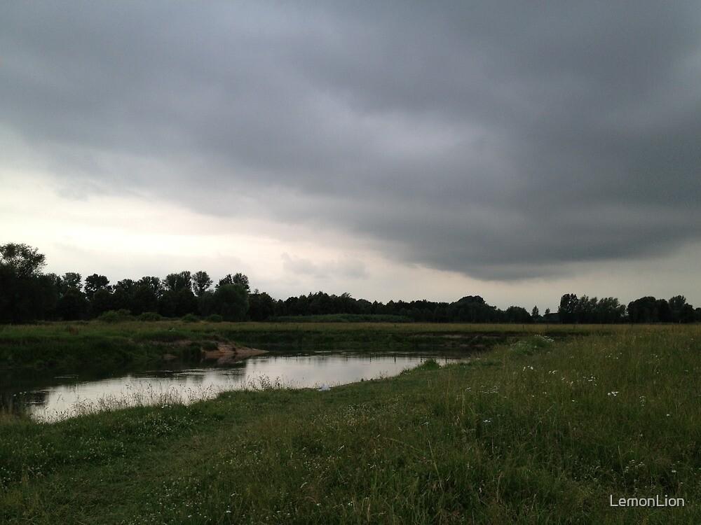 Rain is coming by LemonLion
