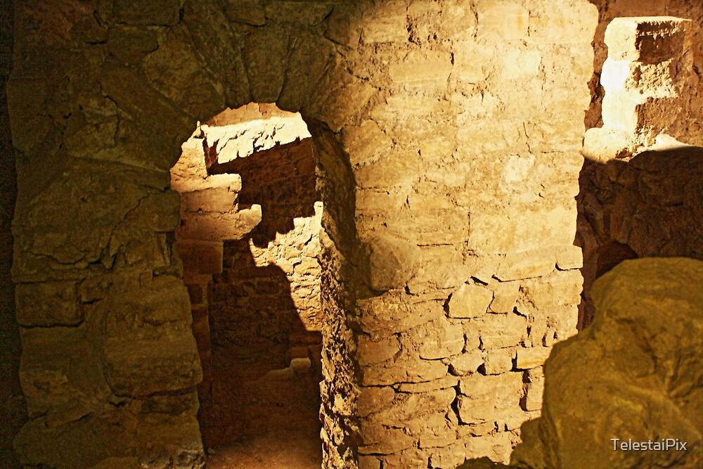 Notre Dame Roman Ruins by TelestaiPix