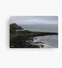Giant's Causeway in County Antrim Ireland Canvas Print