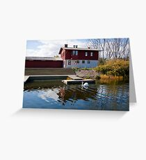 Krnotforeningen Oresund swans in Malmo Greeting Card