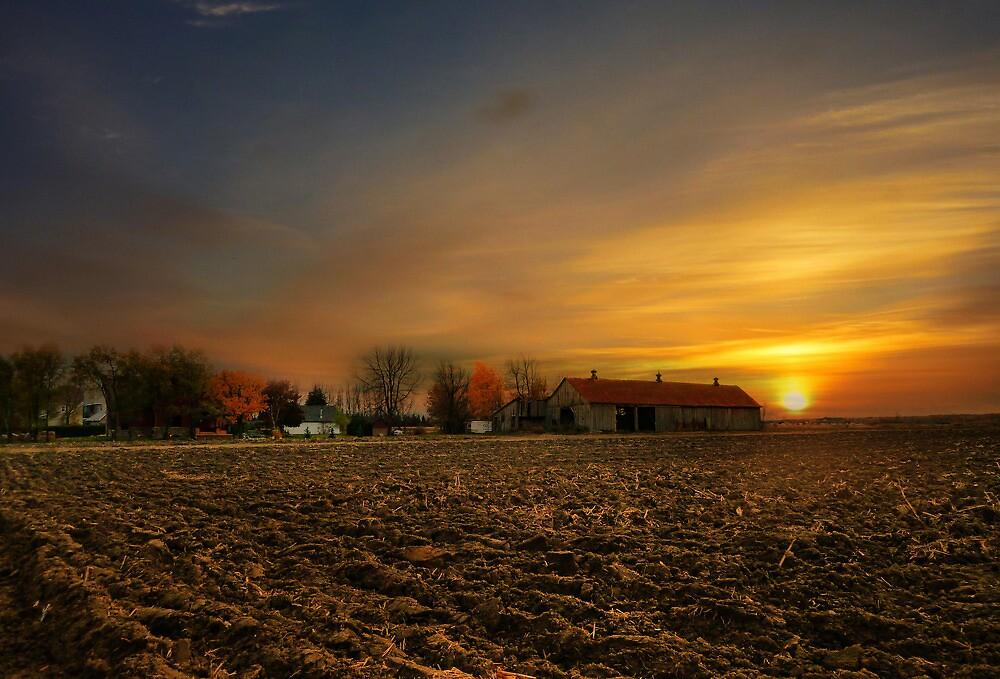 Sunrise over Farmland by sunshine65