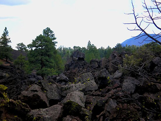 SUNSET CRATER NATIONAL MONUMENT ARIZONA AUGUST 2006 by photographized