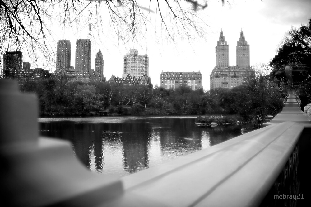 NYC - Central Park Landscape by mebray21