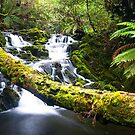 Olivia Creek Cascades pt 3 by bluetaipan