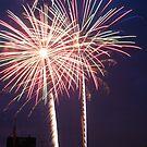 4th of July Fireworks  by Vonnie Murfin