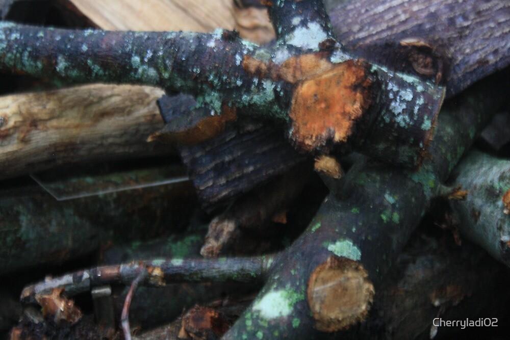Wood pile I by Cherryladi02