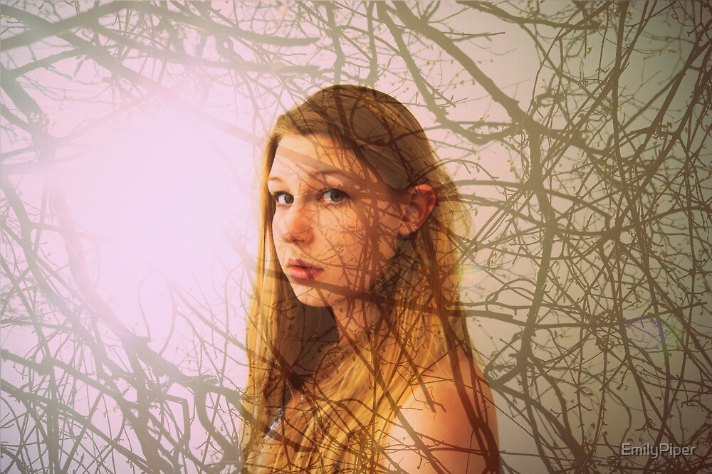 hidden behind branches  by EmilyPiper