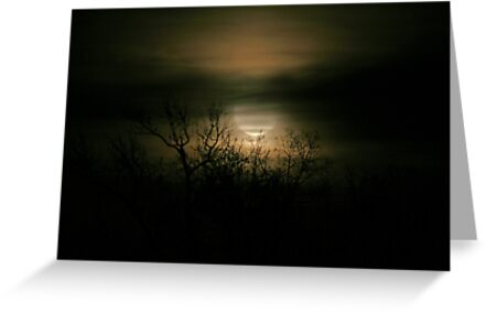 Moon Over Prince George by Karen Harrison