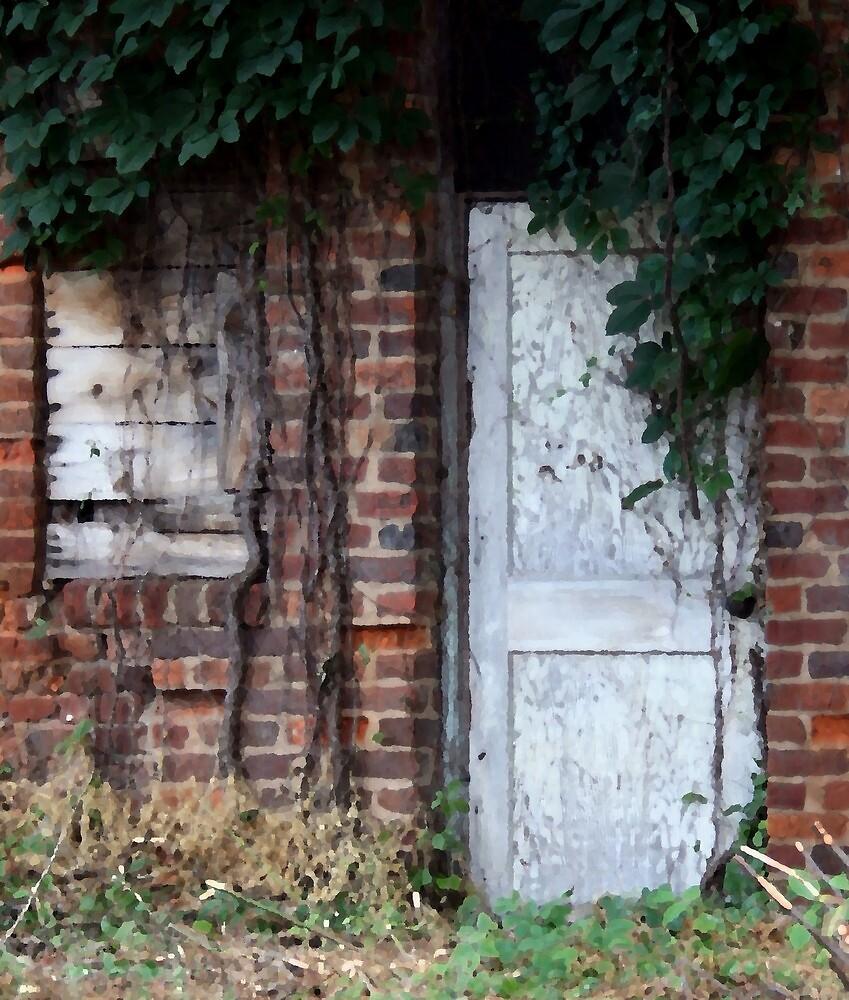 Old Abandoned Building by Karen Harrison