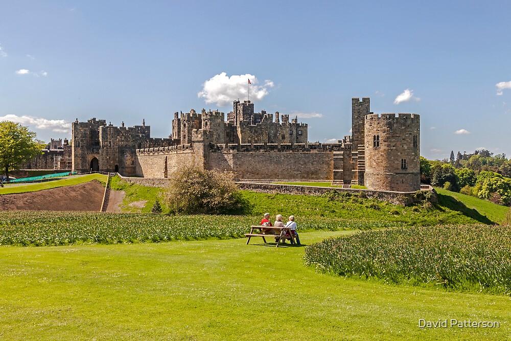 Alnwick Castle by David Patterson