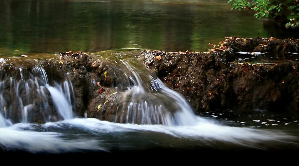 Silky Waters by Karen Harrison