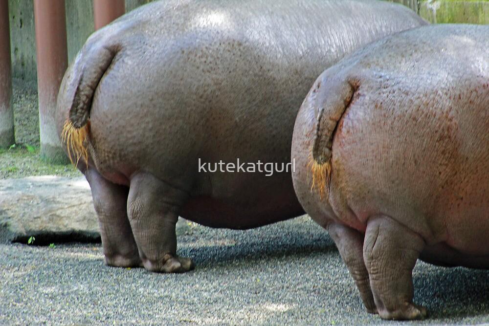 Hippo Hooplah by kutekatgurl